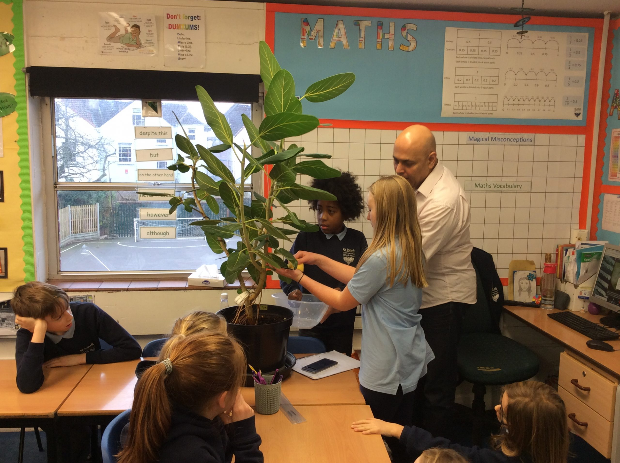 Cabot Class Have Been Given A Tree To Look After As Part Of Their Rainforest Topic